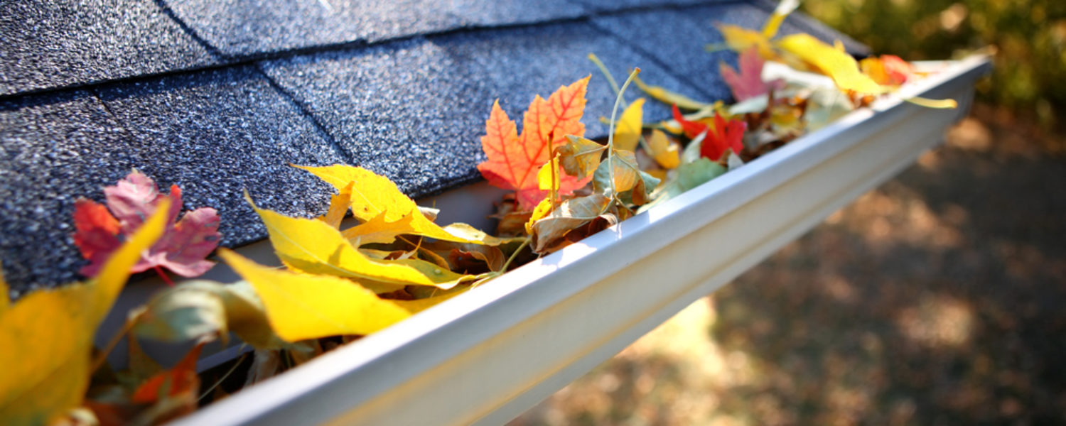 Colorful fall leaves in gutters of roof